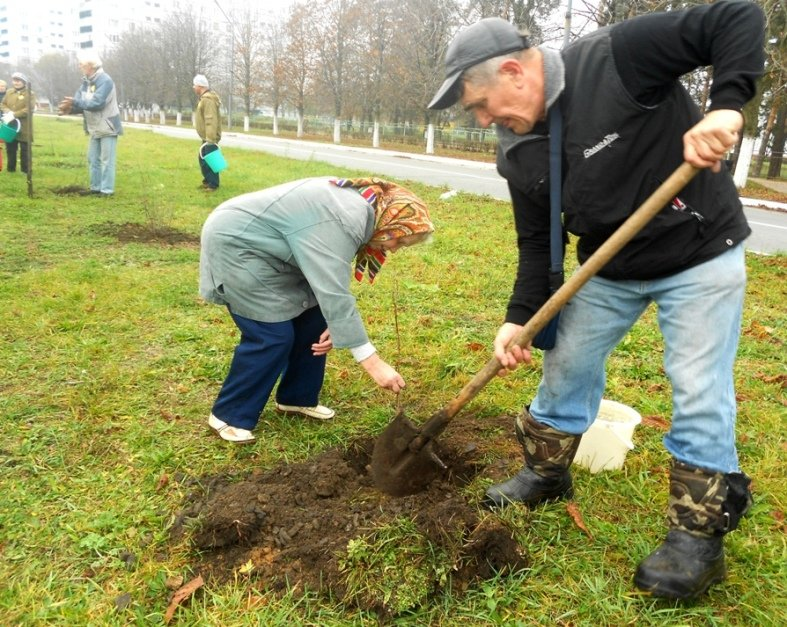 """На Хмельниччині пройшла акція """"Посади дерево – збережи планету»"""
